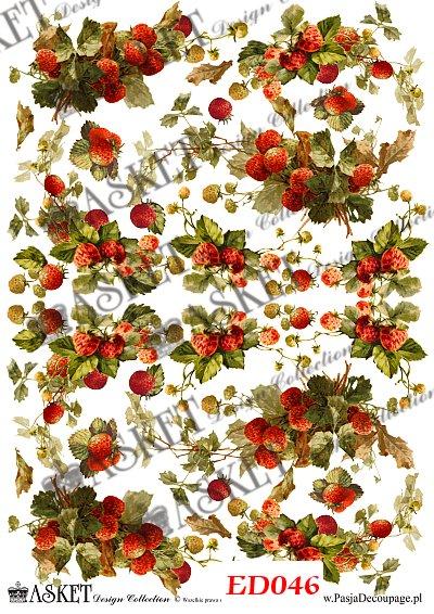 papier decoupage owoce