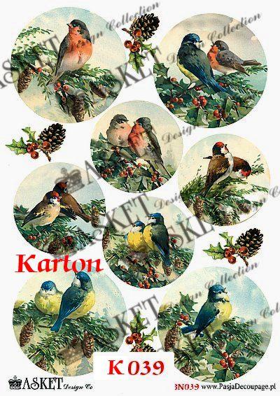 zimowe małe ptaszki