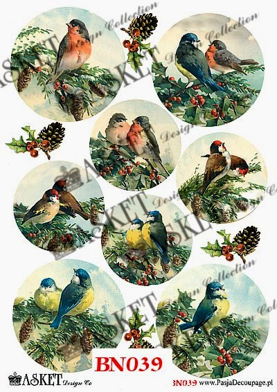 zima, ptaki na drzewach