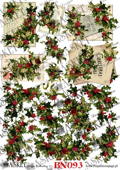 Owoce i liście ostrokrzewu z listami i bez