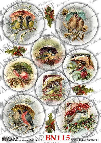ptaki zimą siedzących na gałęziach pod parasolami