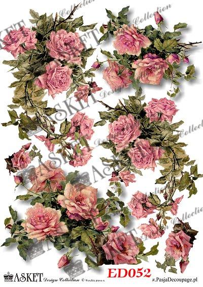 motywy róż w dużym rozmiarze