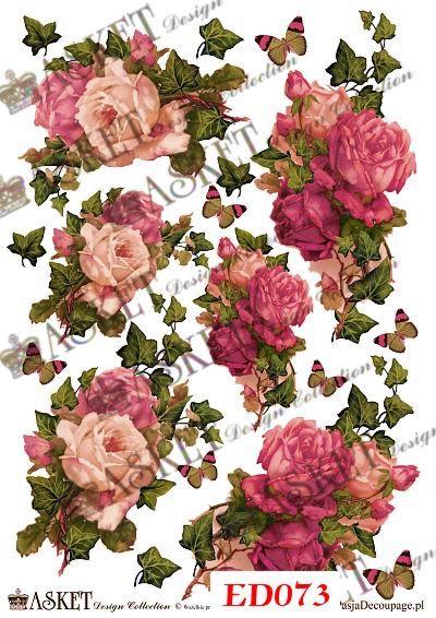 róże i bluszcz