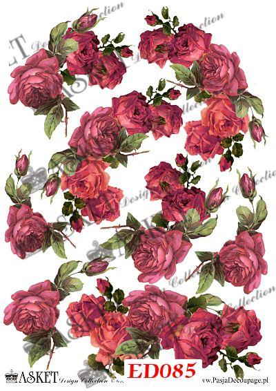 motywy bordowych róż w dużych rozmiarach