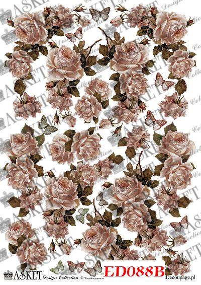 Wyblakłe kolory delikatnych róż