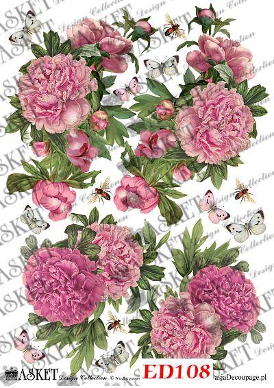 Duże grafiki różowych kwiatów