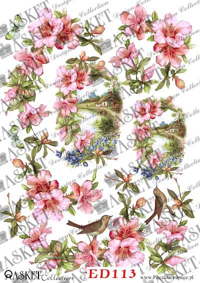 różowe kwiatki z wiosennym pejzażem