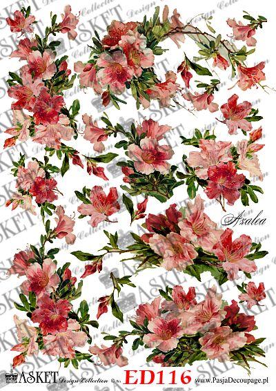 wiązanki różowych kwiatów