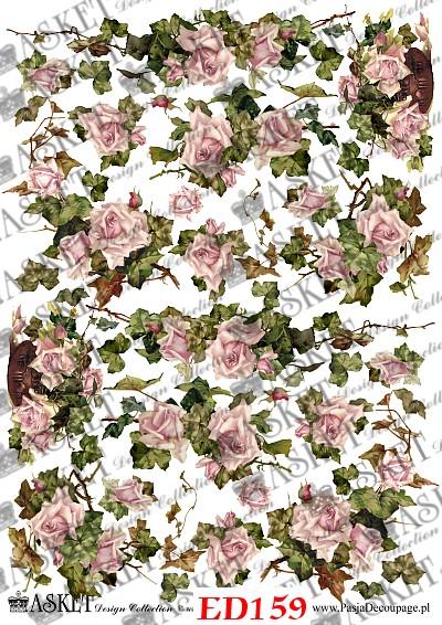 róże w kolorze brudnego rożu