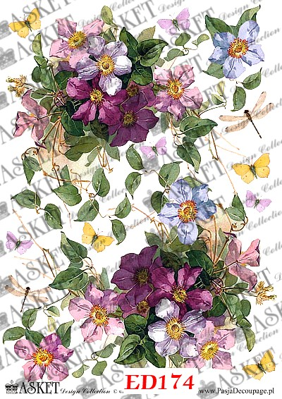 due rozmiary kwiatów z motylami