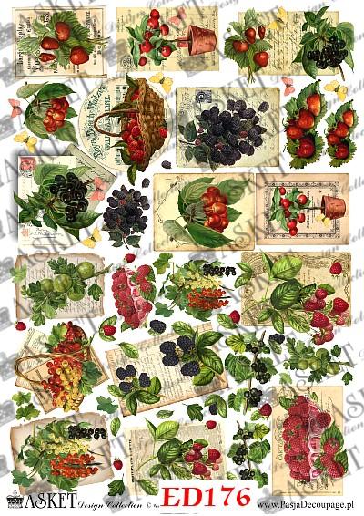mix letnich owoców