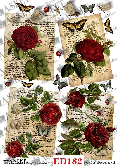 czerwone róże z listem