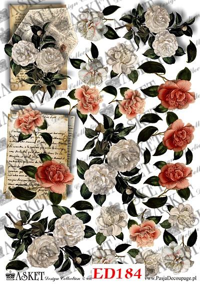 kolorowe małe kwiatki