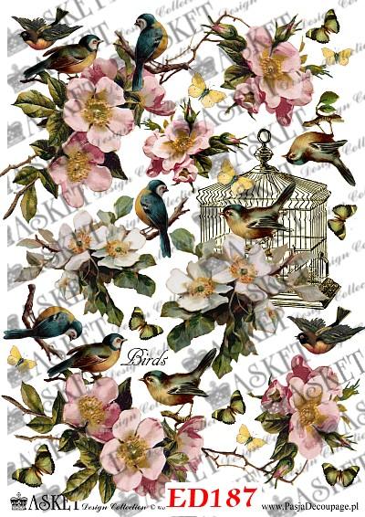 różowe kwiatki i ptak w klatce