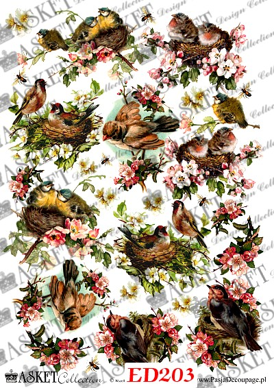 Kolorowe ptaki w kwiatach