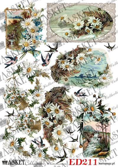 Białe kwiatki i jaskółki