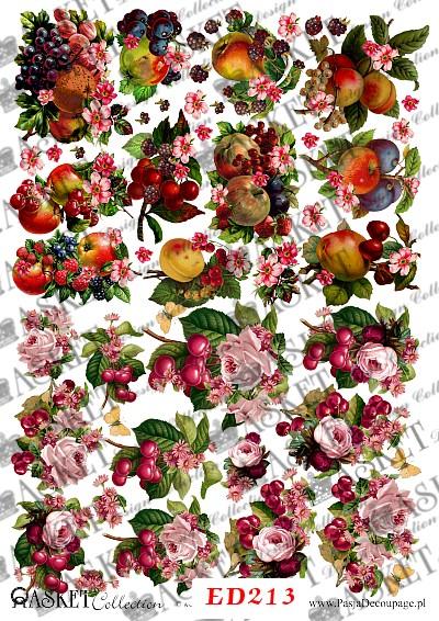 owoce w kolorach lata