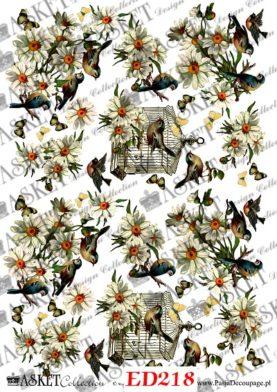 białe margaretki i ptaszki