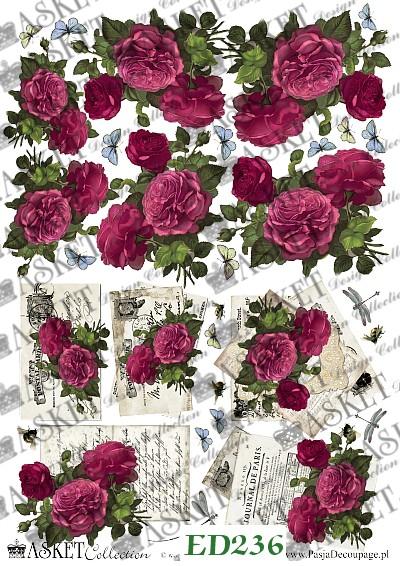 listy i róze w koloże fuksji