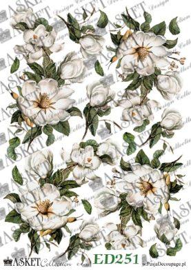 motyw białych kwiatów