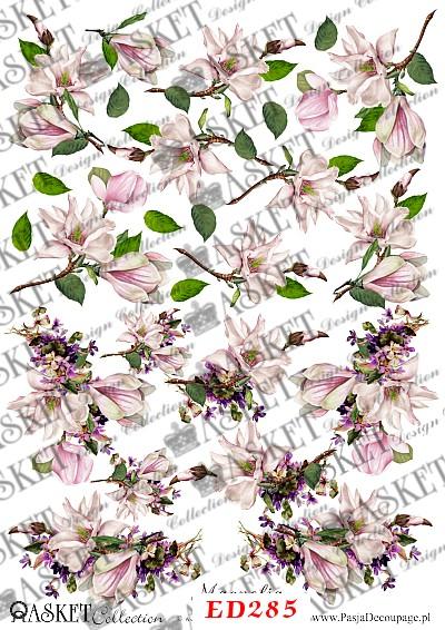 delikatne motywy z magnolią
