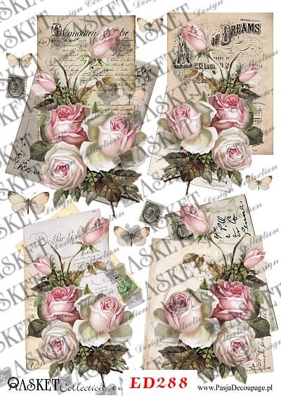 róże na papierze