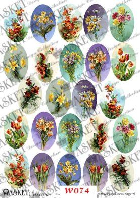 Kolorowe kwiaty wiosną