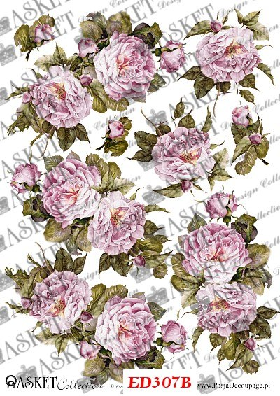 blade róże