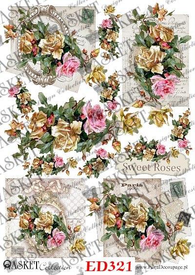 angielskie róże sweet rose